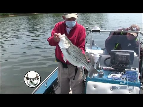 Southern Woods and Waters: Fishing with Dude and Roy p1